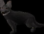 Sinclair Guard dog
