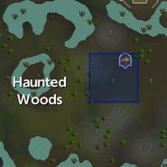 Fangs location