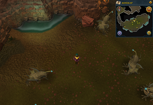 Scan clue Fremennik Slayer Dungeon north of centre of aquanite chamber