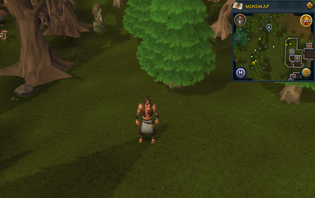 File:Scan clue Tirannwn southeast of tree gate.png