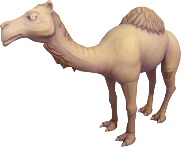 File:Ali the Camel.png