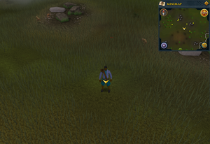 Scan clue Piscatoris north-west of southern fence