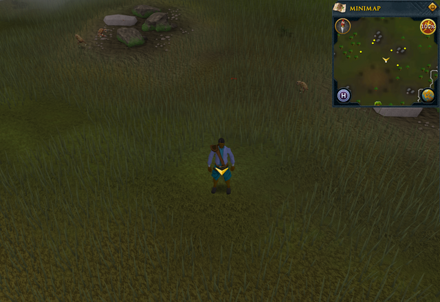 File:Scan clue Piscatoris north-west of southern fence.png