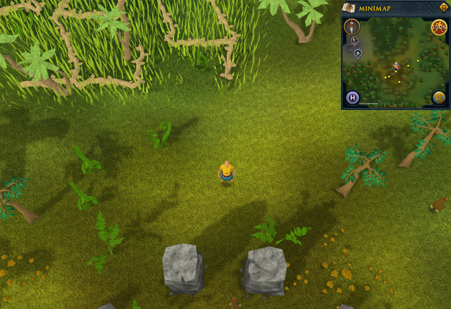 File:Compass clue Karamja north of nature altar.png