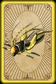 Thieving locust card detail