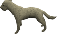 Labrador (white) pet