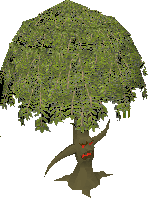 File:Old Willowent.png