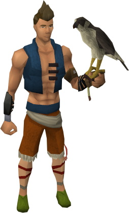 File:Falconer's glove equipped.png