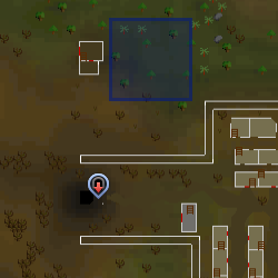 File:Evil Tree (south of Tree Gnome Stronghold) location.png