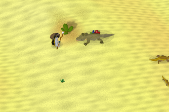 Desert lizard safespot
