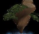 Divine yew tree