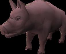 Son of Pigzilla