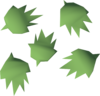 Cactus seed detail