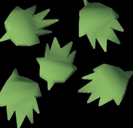 File:Cactus seed detail.png