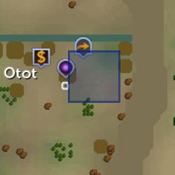 Acca Otot location