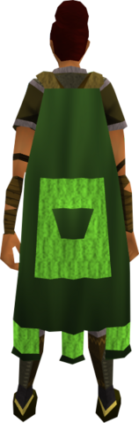 File:Team-31 cape equipped.png