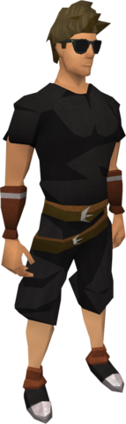 File:Sunglasses (dark) equipped.png