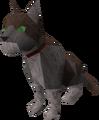 Dromund's cat.png