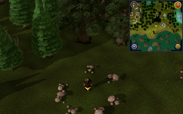 File:Scan clue Tirannwn south-west of Hunter training icon east of Tyras Camp.png