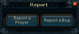 File:Report interface.png