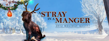 A Stray in a Manger
