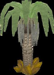 Ardigal tree