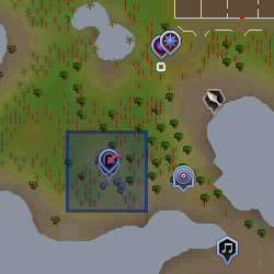 File:Brimhaven Dungeon entrance location.png