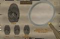 Ernest fingerprint.png