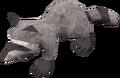 Baby raccoon (grey) pet.png