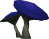 Russula detail