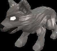 Juvenile wolf