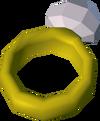 Stolen jewels detail