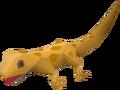 Gecko (orange) pet.png