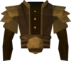 Golden Ahrim's robe top detail