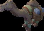 Mostafa the Camel