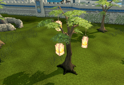 Anniversary tree (Falador)