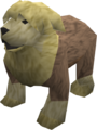 Sheepdog (yellow) pet.png