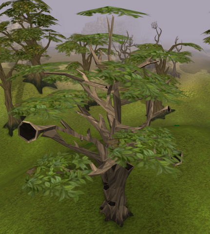 File:Swaying tree.png