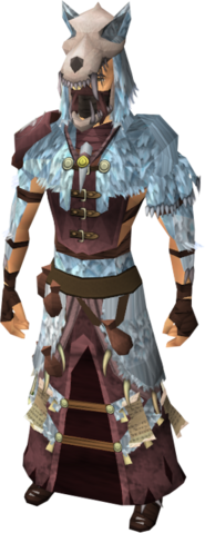 File:Shaman's outfit equipped.png