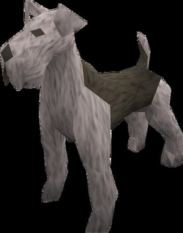 File:Terrier (grey) pet.png