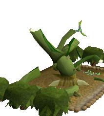 File:Wild jade vine 4.png