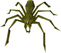 Jade Vine Jungle Spider.png
