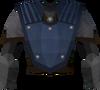 Academy body detail