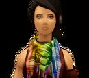 Chic scarf (rainbow)