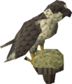 Gyr Falcon.png