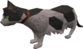 Lazy cat (white and black) pet.png