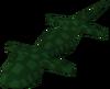 Swamp lizard detail
