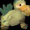 Chompy bird