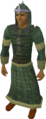 Druidic mage robes equipped.png
