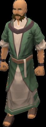 Druid (TWW)